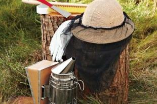 وسایل کار برای زنبورداری